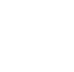 Haven Tampa Logo